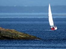 Boat Leaving Harbor
