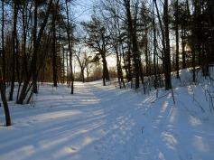 Sunset Park Mont-Royal