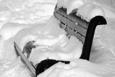 Bench Covered with Snow in Park Mont-Royal
