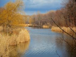 Angrignon Park Lake